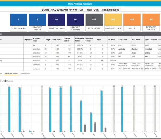 erwin Data Quality